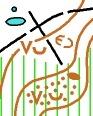 Pond, Linear trace, Undergrowth, Broken ground.
